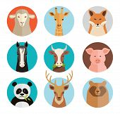 vector animals avatars collection in flat style poster