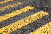 Pedestrian crossing road marking yellow lines on gray asphalt poster