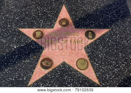 Walk Of Fame Star On The Hollywood Walk Of Fame