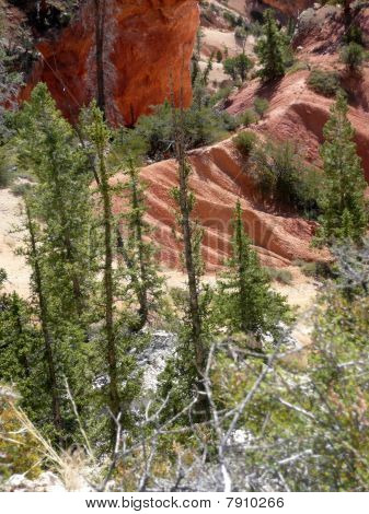 The Colours of Bryce Canyon.