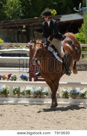2010 June 06, Open Horse Show, Portola Valley, CA