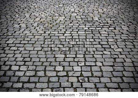 Texture Paved Road