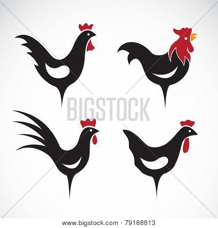 Vector Image Of An Chicken Design On White Background