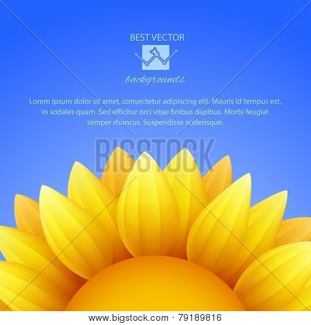 Sunflower background with blue sky, vector.