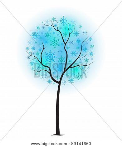 Snow Ball Tree