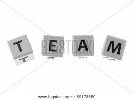 Buzzwords Team