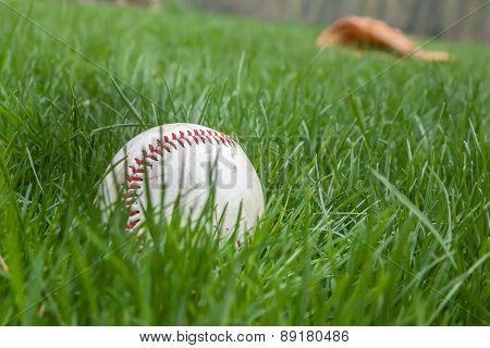 Baseball In Grass With Glove Behind