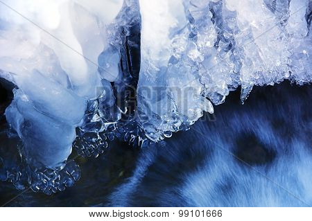 ice water.Icicles hanging from the branch resulting from the melting snow