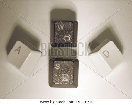 Wasd Keys