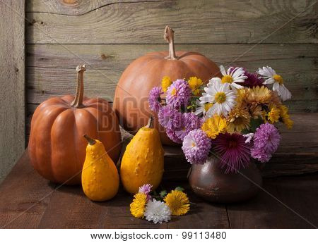 Autumn still life - pumpkins  and with colourful chrysanthemums bunch against the background of old wooden wall.
