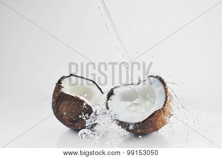 Cracked Coconut Splashing
