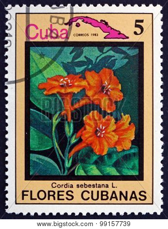 Postage Stamp Cuba 1983 Geiger Tree, Flowering Plant