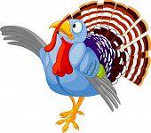 Vector Illustration of Thanksgiving Cartoon turkey presenting poster