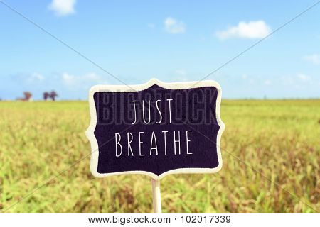 a black signboard with the text just breathe written in it in a peaceful landscape poster