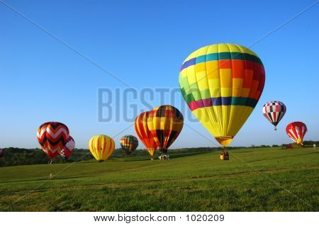 Balloon Field