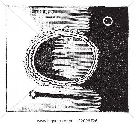 Archimedes seen through the telescope, vintage engraved illustration. Trousset encyclopedia (1886 - 1891).