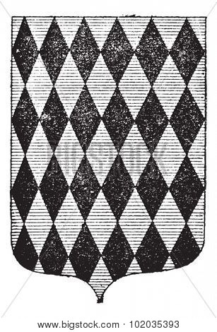 Diamond Coat of Arms, vintage engraved illustration. Dictionary of Words and Things - Larive and Fleury - 1895