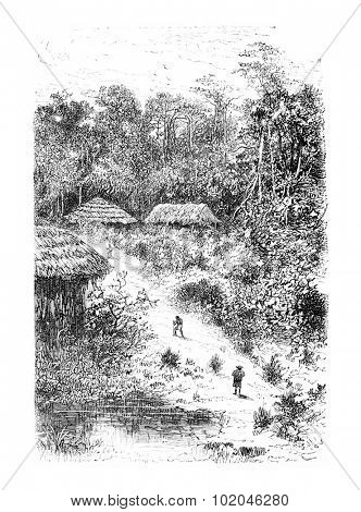 Village of Guineo in Amazonas, Brazil, drawing by Riou from a photograph, vintage engraved illustration. Le Tour du Monde, Travel Journal, 1881 poster