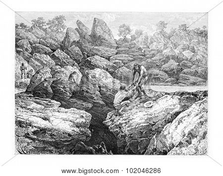 Rescued by a Native From the Edge of a Precipice in Oiapoque, Brazil, drawing by Riou from a sketch by Dr. Crevaux, vintage engraved illustration. Le Tour du Monde, Travel Journal, 1880 poster