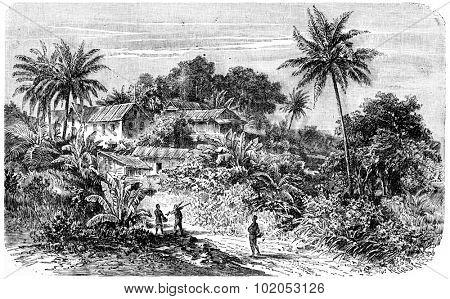 For a settlement on the Cameroon River, vintage engraved illustration. Journal des Voyage, Travel Journal, (1880-81). poster