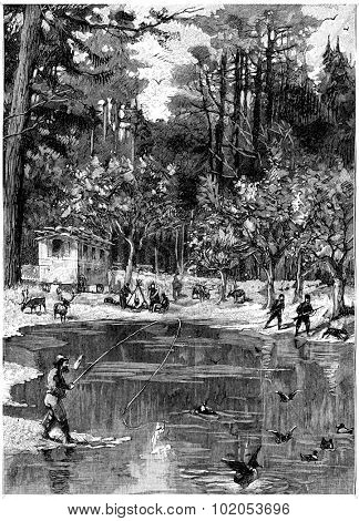 It was like an oasis, vintage engraved illustration. Jules Verne Cesar Cascabel, 1890.
