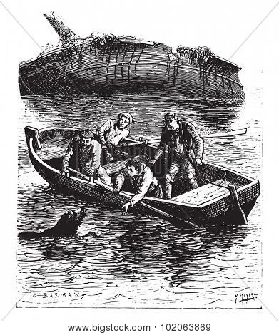 The animal swam painfully toward the boat, vintage engraved illustration.  Jules Verne, a 15 year old captain.