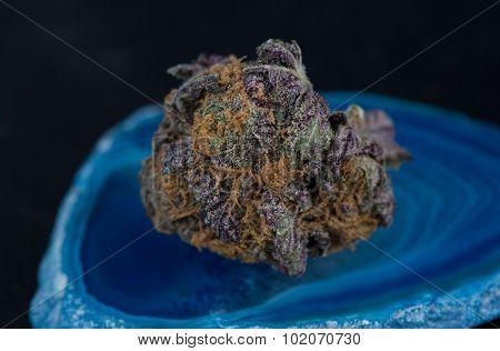 Grandaddy Purple Medicinal Marijuana