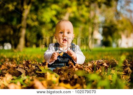 Surprise - baby sitting in fallen leaves