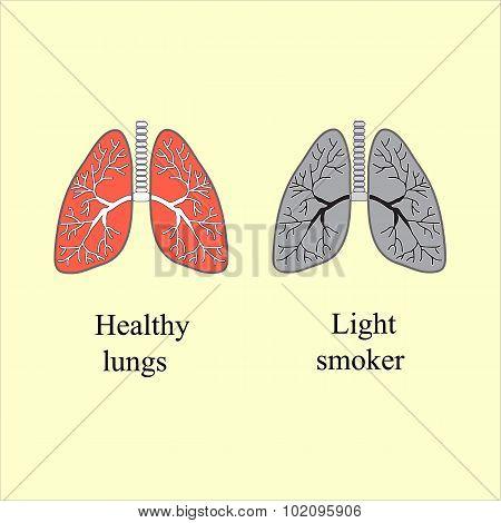 Light smoker. The harm of smoking. Vector illustration