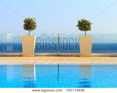Beautiful Sea View From Clean Swimming Pool With Plant Decorations