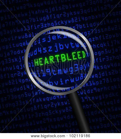 Heartbleed Revealed In Computer Code Through A Magnifying Glass