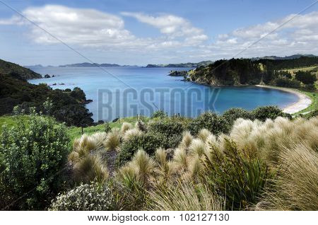 Landscape Of Mahinepua Bay