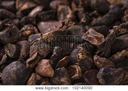Whole dried Cola Nuts for use as background image or as texture (close-up shot) poster