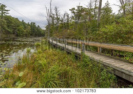 Boardwalk Next To A Slow Meandering River