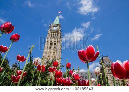 Parliament Building in Ottawa Canada