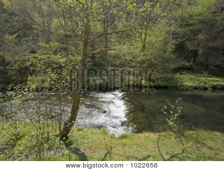 Sparkling River With Rapids