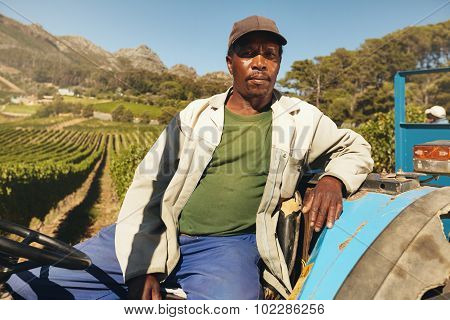 Farmer On His Tractor In The Vineyard