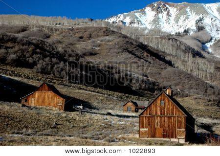 Homestead Landscape