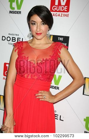 LOS ANGELES - SEP 18:  Yvette Yates at the TV Industry Advocacy Awards Gala at the Sunset Tower Hotel on September 18, 2015 in West Hollywood, CA