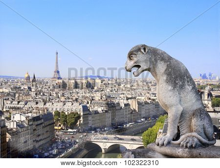 Gargoyle overlooking Paris up on Notre Dame de Paris and river Seine, France