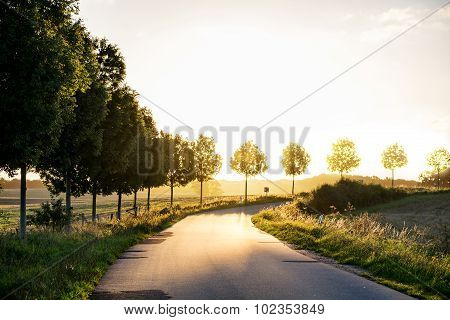 Country Road  Leading To The Autumnal Sunset Light, Concept Of Retirement And Evening Of Life