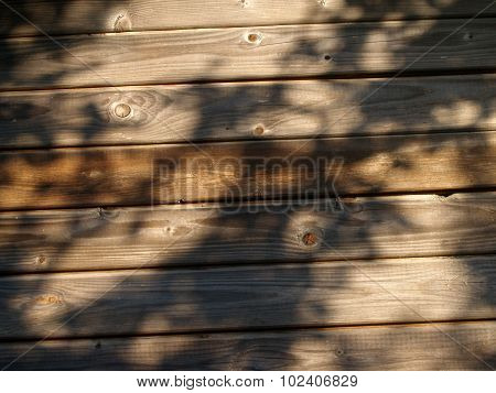 The weathered wooden planks background with tree shadow