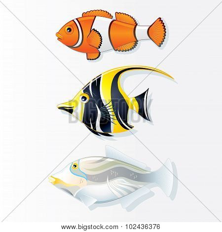 Tropical Reef Fishes. Vector Collection
