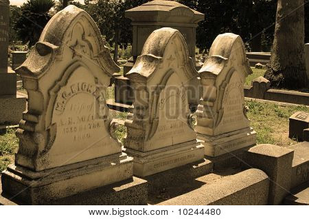 Row of 3 Historic Headstones