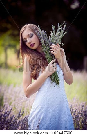 Beautiful young woman on lavender field holding bouquet of lavanda flowers in hands and looking down