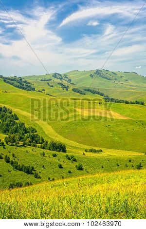 Summer Landscape: Green Hills Covered By Trees And Blue Sky With White Clouds