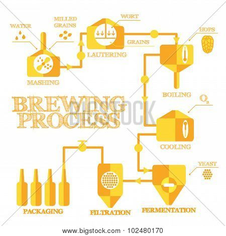 Brewing infographic