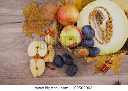 Melon,apples And Plums Of Autumn Still Life