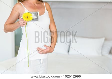 Midsection of pregnant woman holding yellow flower with sonogram in bedroom