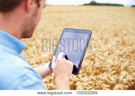 Farmer Using Digital Tablet In Field Of Wheat